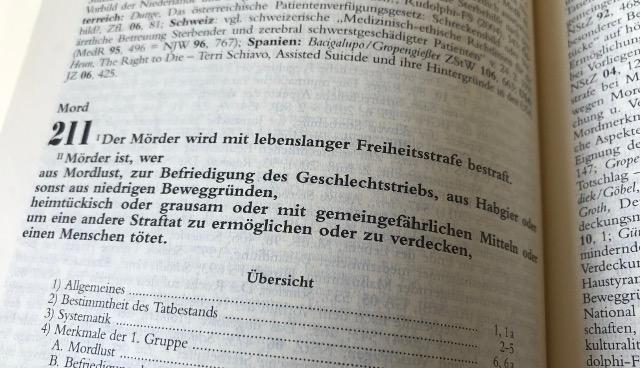 Strafrecht Eggenfelden Mord